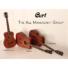 Kép 6/8 - Cort akusztikus gitár EQ-val, mahagóni