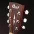 Kép 5/6 - Cort akusztikus gitár, open pore