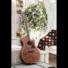 Kép 12/13 - Cort akusztikus gitár Fishman EQ, mahagóni, natúr